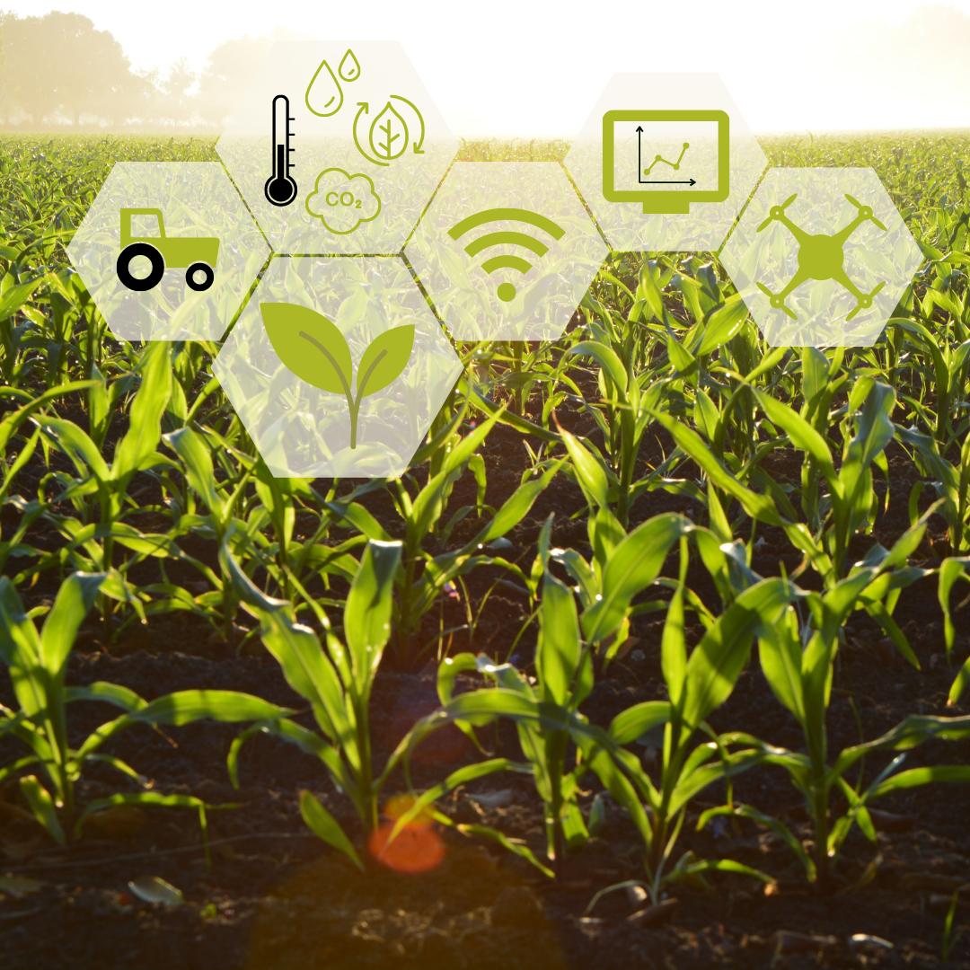 Цифровизация агропромышленного комплекса