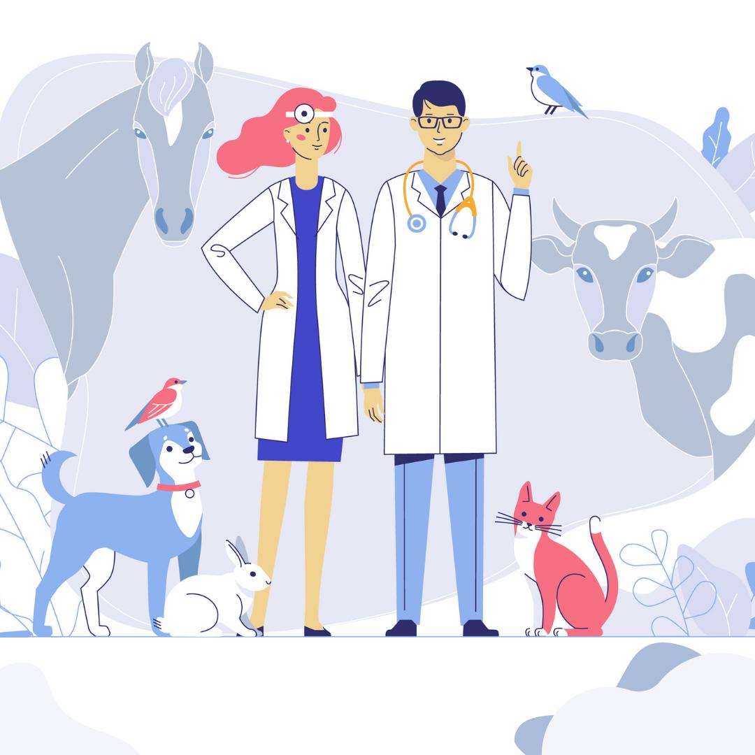 Организация противоэпизоотических и лечебных мероприятий в ветеринарии