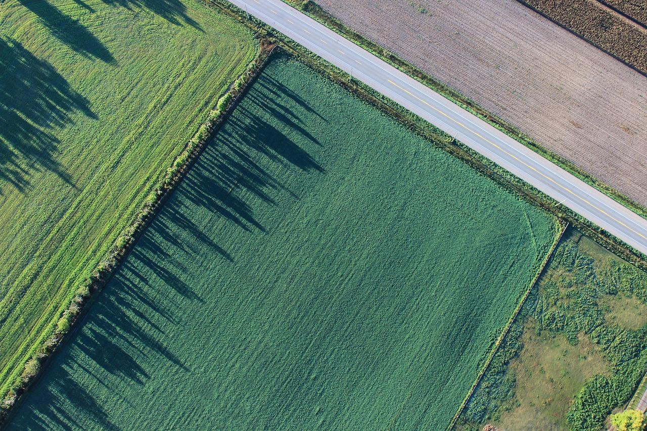 Государственное регулирование оборота земель сельскохозяйственного назначения
