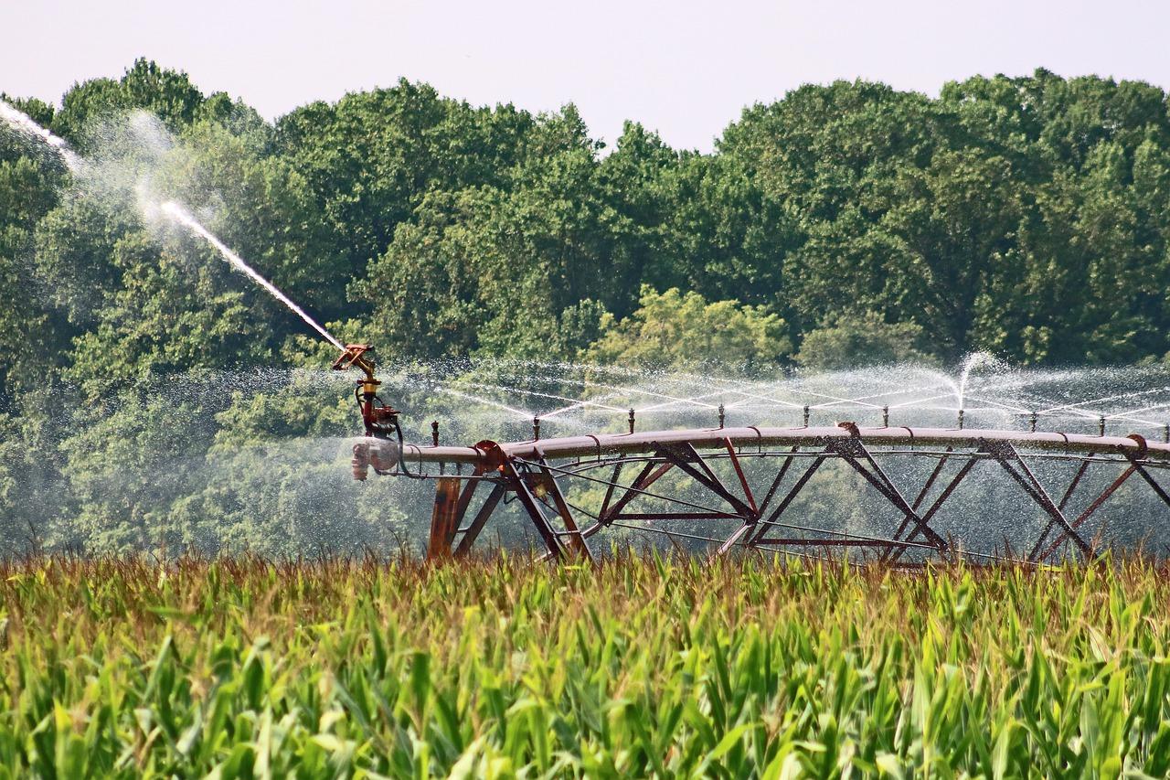 Государственное регулирование в области мелиорации земель сельскохозяйственного назначения