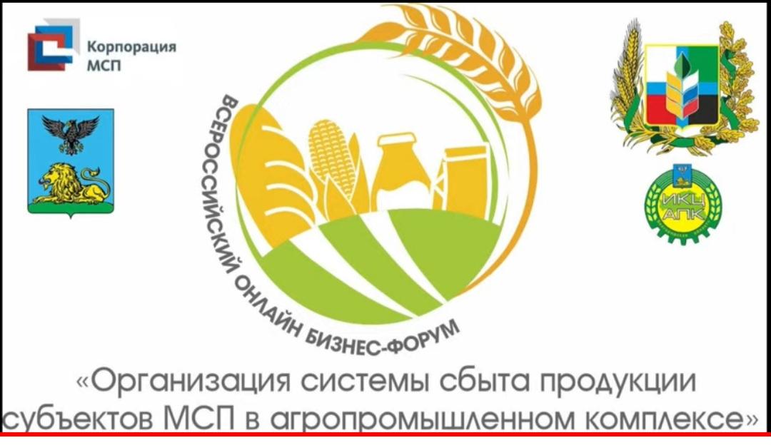 Участие во Всероссийском бизнес-форуме
